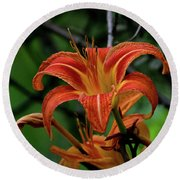 Round Beach Towel featuring the photograph Norris Lake Daylily 2 by Douglas Stucky