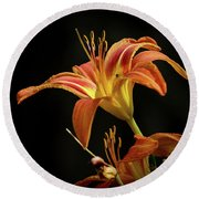 Round Beach Towel featuring the photograph Norris Lake Daylily by Douglas Stucky