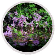 Round Beach Towel featuring the photograph Norris Lake Floral 2 by Douglas Stucky