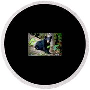 Round Beach Towel featuring the mixed media North American Black Bear by Charles Shoup