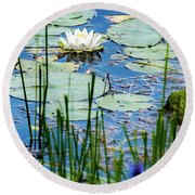 North American White Water Lily Round Beach Towel