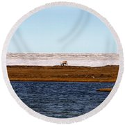 North Slope Round Beach Towel by Anthony Jones
