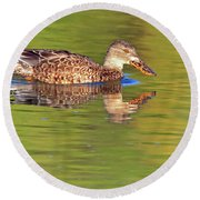 Norther Shoveler Female Round Beach Towel by Tam Ryan