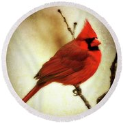 Northern Cardinal Round Beach Towel by Lana Trussell