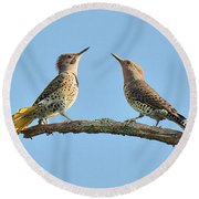 Northern Flickers Communicate Round Beach Towel
