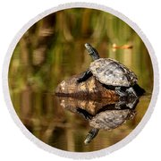 Round Beach Towel featuring the photograph Northern Map Turtle by Debbie Oppermann
