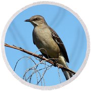Northern Mockingbird Round Beach Towel by Bruce J Robinson