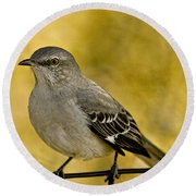 Northern Mockingbird Round Beach Towel by Chris Lord