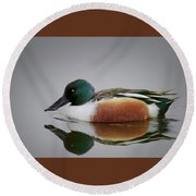 Northern Shoveler Round Beach Towel