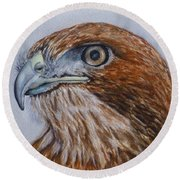 Northern Red Tailed Hawk Round Beach Towel