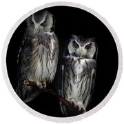 Northern White-faced Owl Round Beach Towel