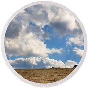 Not A Cow In The Sky Round Beach Towel