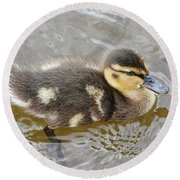 Not So Ugly Duckling Round Beach Towel