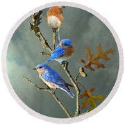 Nothing But Bluebirds Round Beach Towel