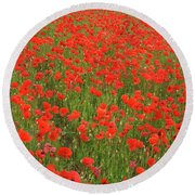 Nottinghamshire Poppies Round Beach Towel