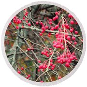 November Crabapples Round Beach Towel