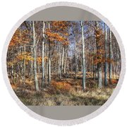 Round Beach Towel featuring the photograph November Forest by Betsy Zimmerli