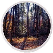 Round Beach Towel featuring the photograph November Light by Kendall McKernon