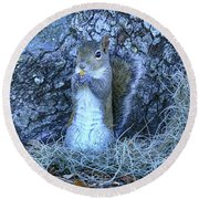 Round Beach Towel featuring the photograph Nuts Anyone by Deborah Benoit