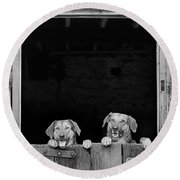 Nz Huntaways, Forever Happy And Nosey. Working Sheep Dogs Round Beach Towel