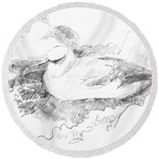 New Zealand White-capped Mollymawk Round Beach Towel