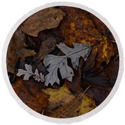 Oak And Maple Leaves Round Beach Towel