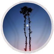 Round Beach Towel featuring the photograph Oak Kissing by Bess Hamiti