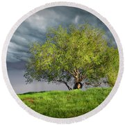 Oak Tree With Tire Swing Round Beach Towel