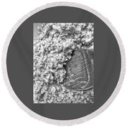 Round Beach Towel featuring the photograph Oatmeal by Robert Knight