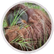 Round Beach Towel featuring the photograph Obscurity Edition 4 by Judy Kay
