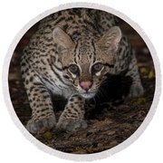 Ocelot #1 Round Beach Towel by Wade Aiken