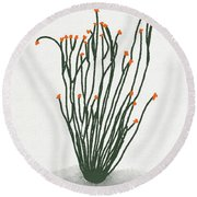 Ocotillo Round Beach Towel