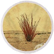 Ocotillo - The Desert Coral Round Beach Towel