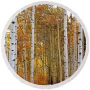 October Aspen Grove  Round Beach Towel