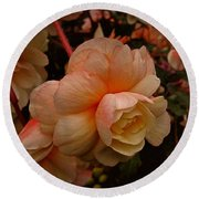 Round Beach Towel featuring the photograph Vintage Begonia No. 2 by Richard Cummings