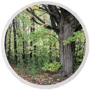 October Trees Round Beach Towel