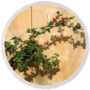 Of Light And Shadow - Bougainvillea On A Timeworn Plaster Wall Round Beach Towel