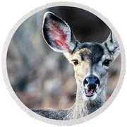 Oh, Deer Round Beach Towel