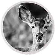 Oh, Deer, Black And White Round Beach Towel