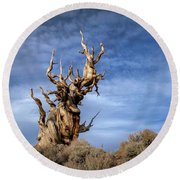 Round Beach Towel featuring the photograph Old Friend by Sean Foster