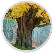 Old Maple Tree And Swing In Autumn Color Round Beach Towel