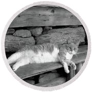 Round Beach Towel featuring the photograph Old Mill Cat by Sandi OReilly