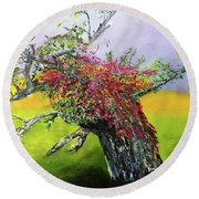 Old Nantucket Tree Round Beach Towel
