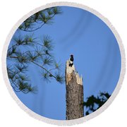 Round Beach Towel featuring the photograph Old Red by Skip Willits