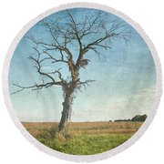Round Beach Towel featuring the photograph Old Tree  by Betty Pauwels