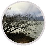 Round Beach Towel featuring the photograph Old Tree By The Bay by Chriss Pagani