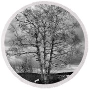 Round Beach Towel featuring the photograph Old White Birch by Betty Pauwels