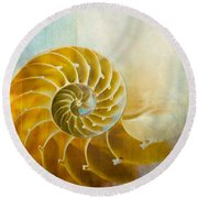 Old World Treasures - Nautilus Round Beach Towel by Colleen Kammerer