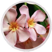 Round Beach Towel featuring the photograph Oleander Dr. Ragioneri 2 by Wilhelm Hufnagl