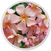 Round Beach Towel featuring the photograph Oleander Dr. Ragioneri 3 by Wilhelm Hufnagl